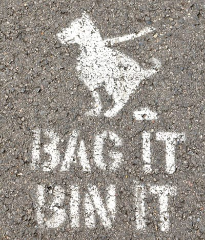 Dog Waste - bag it and bin it