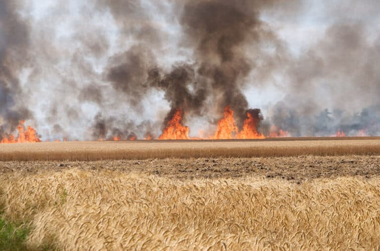 Farmer appeals for people to be responsible after grass fire