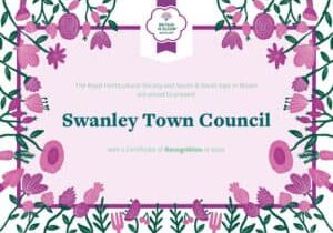Recognition-SwanleyTownCounci